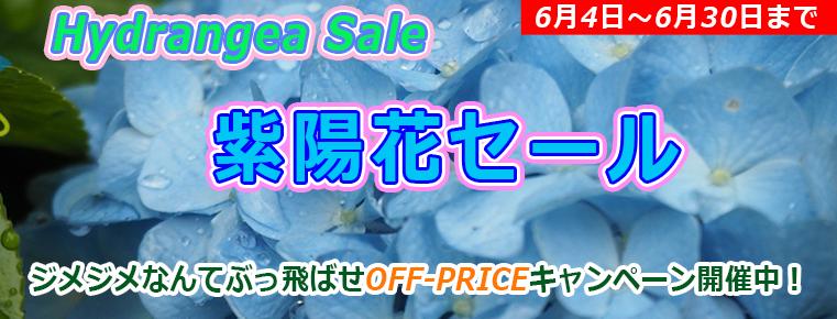 ストーム「紫陽花セール」BTOパソコン・ゲーミングPCがお得!